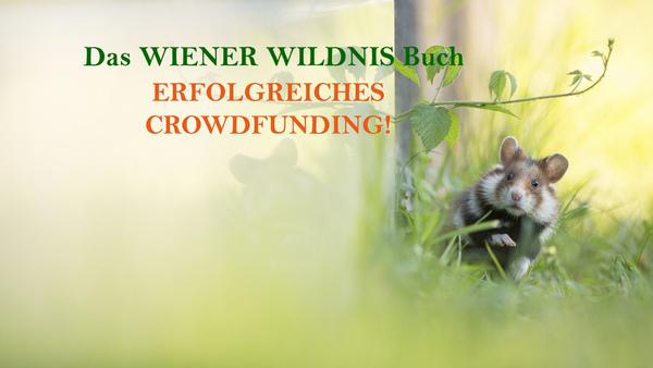 Erfolgreiches Crowdfunding