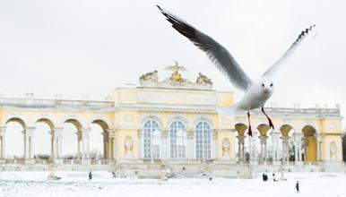 Auf Fotosafari im Schlosspark Schönbrunn